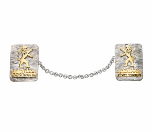 Silver and Gold Jerusalem Lion Tallit Clips - Baltinester Jewelry