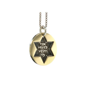 Ani Ledodi Silver Star of David Pendant - Baltinester Jewelry