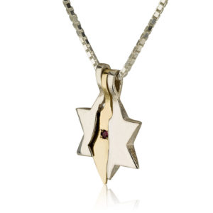 Land of Israel Star of David Pendant - Baltinester Jewelry