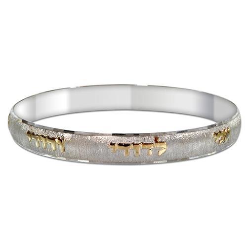 Silver and Gold Ani L'Dodi Brushed Bangle Bracelet - Baltinester Jewelry
