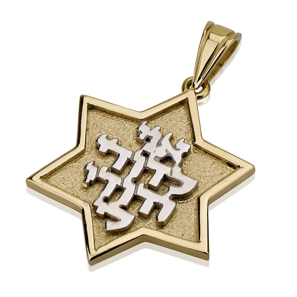 Ani Ledodi Embossed 14k Star of David Pendant - Baltinester Jewelry