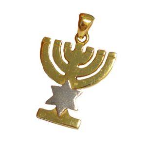 14k Gold Star of David Menorah Pendant - Baltinester Jewelry